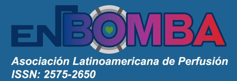 Revista En Bomba